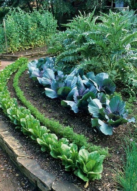家庭菜園款式參考130例 Raised Garden Garden Projects Garden