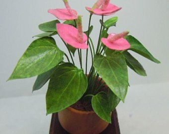 Dollhouse Miniature 1:12 Scale Pre-Cut Leaves For /'Golden Pothos/' Plant
