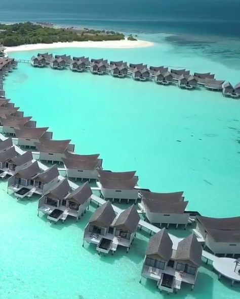 The Maldives is the definition of paradise. If you're planning a trip, check out our ultimate travel guide for the Maldives. We cover everything you need to know!