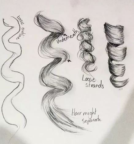 Super How To Draw Hair Male Realistic 62 Ideas How To Draw Curls How To Draw Hair Curly Hair Drawing