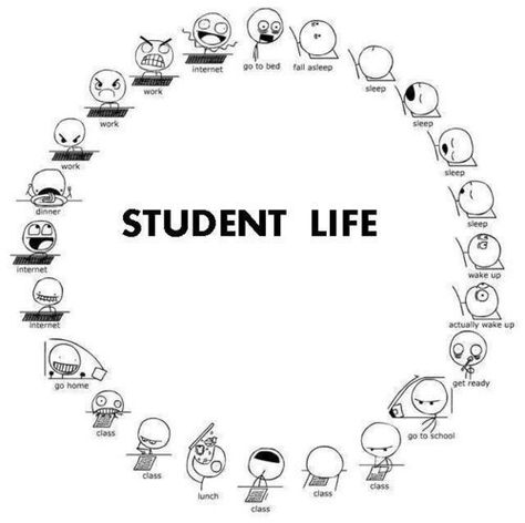 Here is a whimsical depiction of a student's life.  If you have a student in your life who is in high school or college you may want to share!