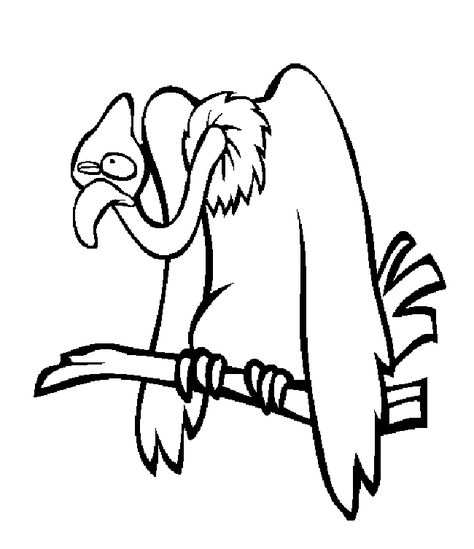 Vulture Coloring Page Pictures Vulture Coloring Page Images