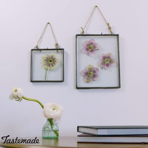 How to Press and Frame Your Flowers  #decoration #decorations #diyhomedecor #Flowers #frame #Press
