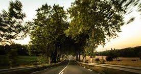 محتويات 1 رؤية الطريق فى المنام 2 رؤية الشارع في الحلم 3 رؤية الطريق الطويل 4 الطريق السريع فى الحلم 5 الطريق الضيق فى الحلم 6 Country Roads Road Country