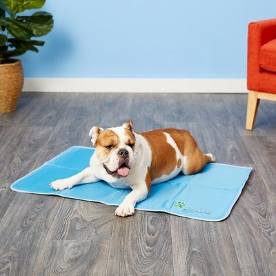 The Green Pet Shop Self Cooling Pet Pad Large Chewy Com Pet