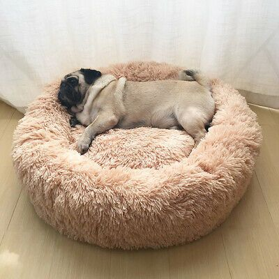 Comfortable Dog Cats Bed Indestructible In 2020 Dog Bed Dog Mattresses Pet Beds