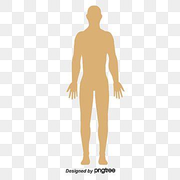 Cuerpo Humano Icono Material De Vectores De Anotacion Clipart Humano Vector Humano Vector De Cuerpo Png Y Psd Para Descargar Gratis Pngtree Human Clipart Human Vector Medical Icon