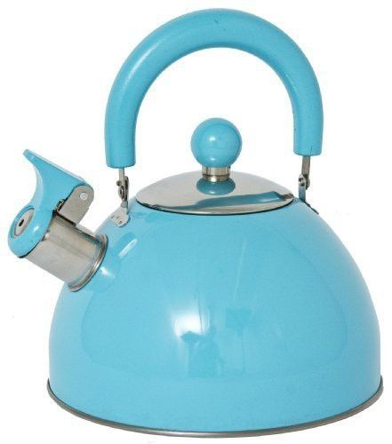 Panorama Retro Whistling Kettle Blue Kettle Stovetop Kettle Steel Whistle