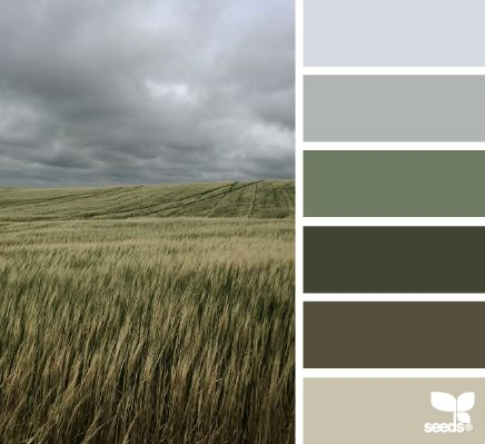 horizon hues, by design seeds Colour Schemes, Color Combos, Color Patterns, Design Seeds, Josef Albers, Color Balance, Color Swatches, Color Pallets, Color Theory