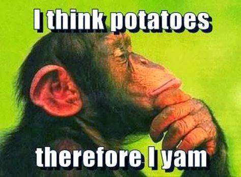 I think potatoes.