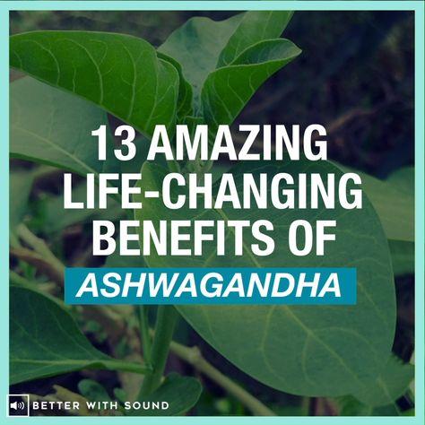13 ASHWAGANDHA BENEFITS FOR YOUR THYROID HEALTH