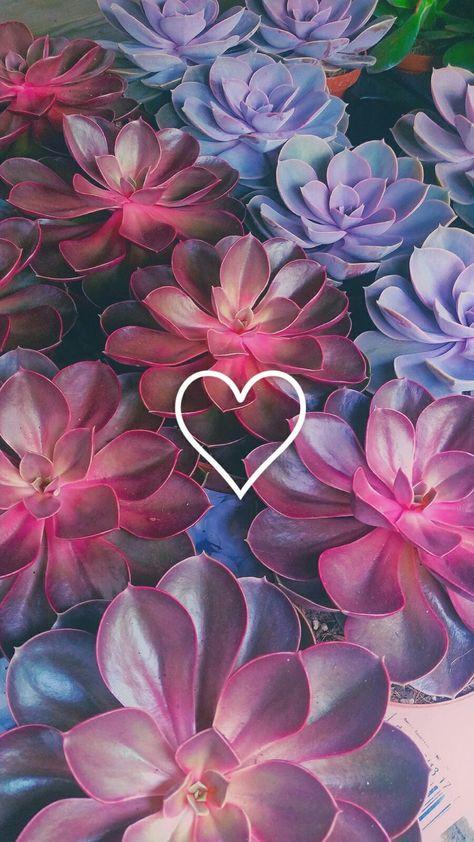 imagen descubierto por Bunnyboy ❁♥. Descubre (¡y guarda!) tus propias imágenes y videos en We Heart It