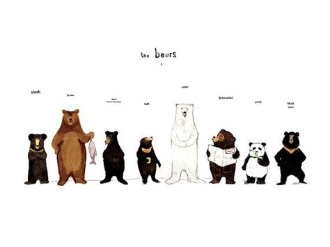 the bear family in colour print by katie viggers
