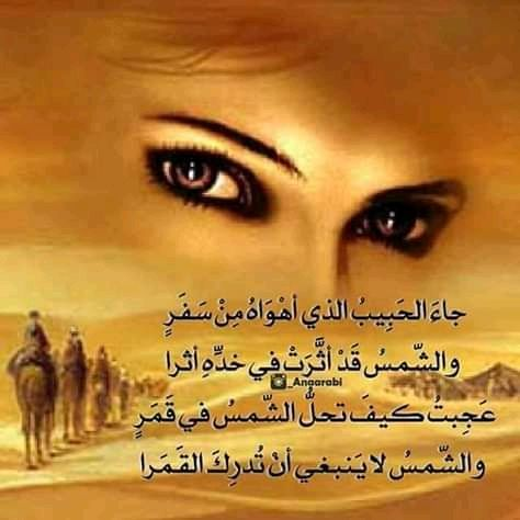 Pin By Hl Tn On شعر اقوال و حكم Beautiful Women Faces Woman Face Arabic Quotes