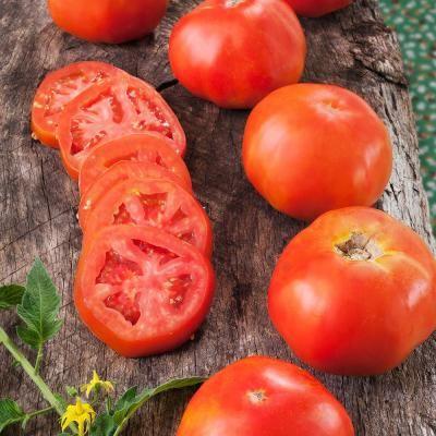 390c689277068455a43e4a9d9a845a9c - Gardeners World Magazine Free Tomato Seeds