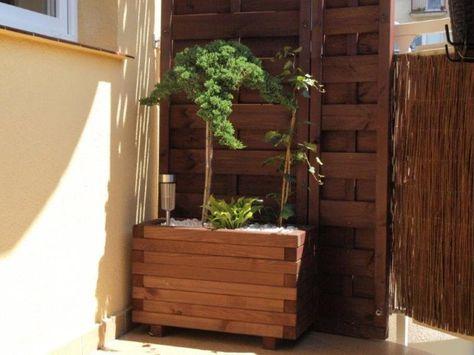 Sloneczny Balkon Sredniej Wielkosci Plants