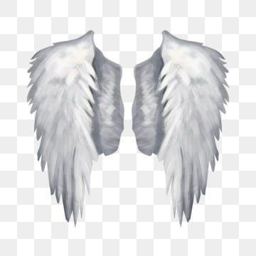 Coruja Bonito Subir A Asa Clipart De Coruja Fofa Adoravel Animal Imagem Png E Vetor Para Download Gratuito Angel Wings Pictures Cartoon Angel Wings Cartoon Wings