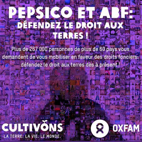 PepsiCo et ABF, arrêtez de traîner les pieds : défendez le droit aux terres ! Plus de 267 000 personnes de plus de 60 pays vous demandent de vous mobiliser en faveur des droits fonciers : défendez le droit aux terres dès à présent ! http://www.behindthebrands.org/fr/actnow
