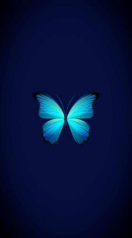 47 Trendy Wall Paper Blue Celular Butterfly Wallpaper Iphone Butterfly Wallpaper Trendy Wall Art