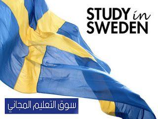 ما هو نظام التعليم في السويد Doc والعمل في السويد بالتفاصيل Sweden يتناول هذا المقال بموقع سوق التعليم المجاني مجموعة Work In Sweden Education System Sweden