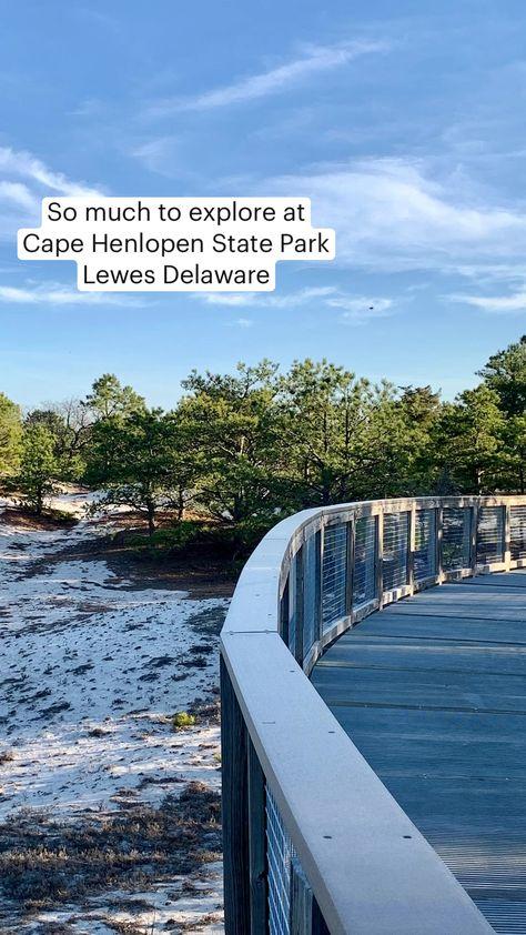 Explore Cape Henlopen State Park Lewes Delaware