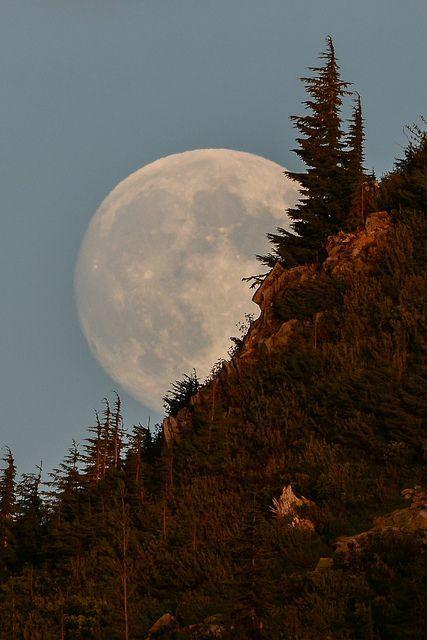 Moonrise at Mount Rainier National Park, Washington State, USA by marietta