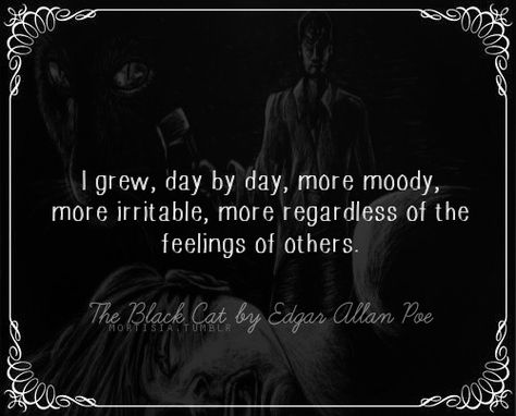 mortisia:  The Black Cat is a short story by Edgar Allan Poe. It was first published in the August 19, 1843, edition of The Saturday Evening Post.