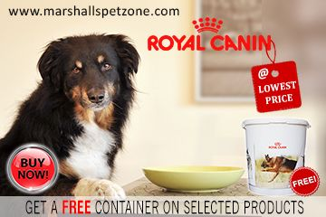 Now Royal Canin Pet Food At Lowest Prices And Get A Free