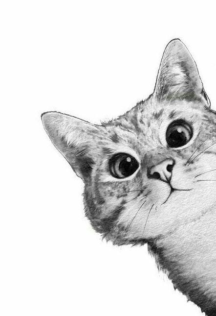 Pin By Dumitru On Arte Di Unghie 3d Cat Graphic Art Cat Art Cat Posters