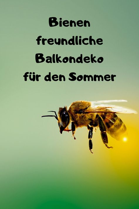 Balkondekoration für den Sommer welche die Bienen lieben. Sommerpflanzen von welchen die Bienen pfofitieren können. #bienen #sommer #balkon #pflanzen #selber #machen