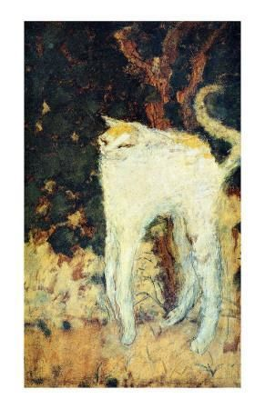 Pierre Bonnard, The White Cat, oil on canvas, Musée d'Orsay, Paris Pierre Bonnard, Elodie Frégé, Ugly Cat, Jeff Koons, Edouard Vuillard, Renaissance Paintings, Illustration Art, Illustrations, Billie Holiday