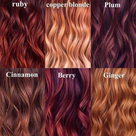 Its that time for fall hair color! Which is your favorite tone? Hair Color And Cut, Cool Hair Color, Red Hair For Cool Skin Tones, Red Hair Tan Skin, Burgundy Red Hair, Deep Red Hair, Light Red Hair, Plum Hair, Bright Hair