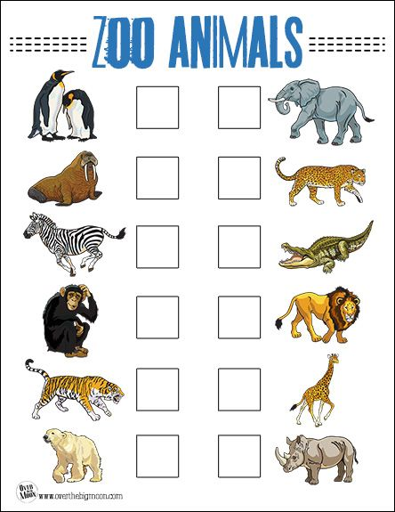 image relating to Zoo Scavenger Hunt Printable named Zoo Animal Monitor Listing for Young children