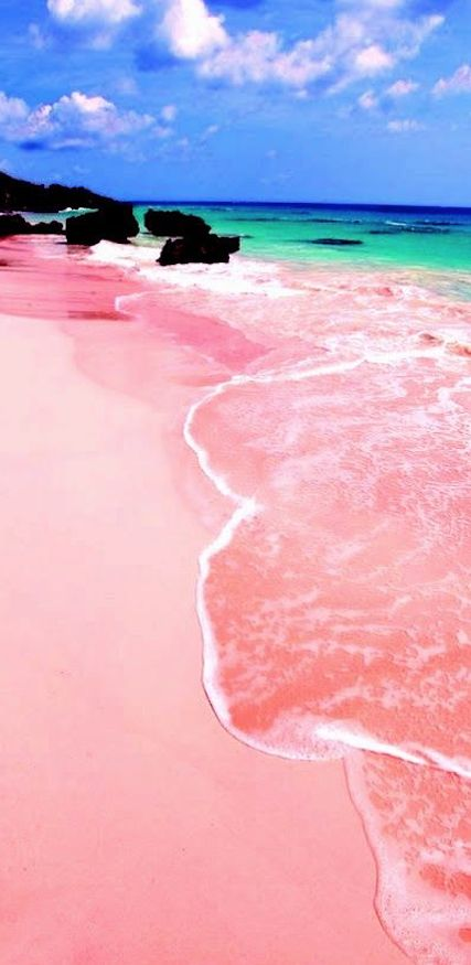 Pink Sand Beach Bermuda Caribbean Beaches Tropics Travel Beautiful