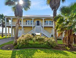 Galveston Com Beachfront Flamingo Vacation Home Rentals Beach