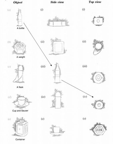 Ncert Solutions For Class 8 Maths Chapter 10 Visualising Solid Shapes Ex 10 1 With Images Solutions Visualisation Class 8