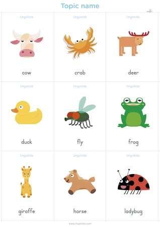 Animales En Inglés Animales En Ingles Animales Vocabulario En Ingles