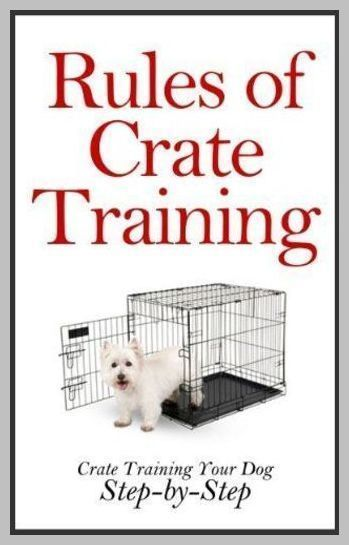 Crate Training The Benefits And Proper Use Of The Dog Crate
