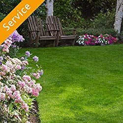 Lawn Care Near Me Find The Best Lawn Care Services Near You 2019 Lawn Aeration Do It Yourself Lawn Care Tips Advice Ob Lawn Care Aerate Lawn Diy Lawn