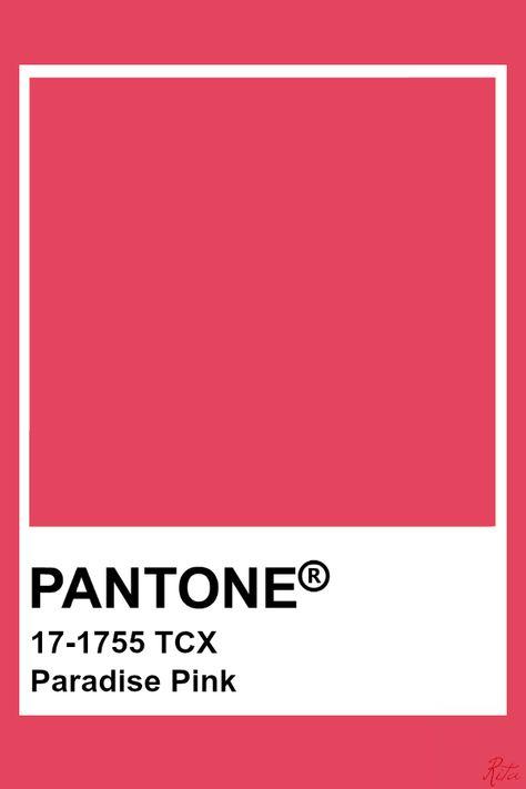 Pantone Paradise Pink