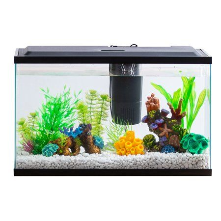 Aqua Culture Aquarium Starter Kit With Led 10 Gallon Easyhomedecor Aquarium Setup Fish Tank
