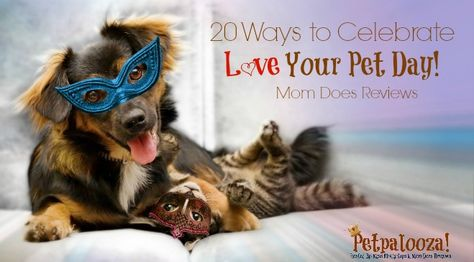 20 Ways To Celebrate Love Your Pet Day Petpalooza Pet Day