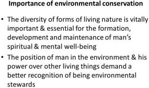 Essay On Environment Conservation Writing Help Environmental In English Hindi Protection Topic