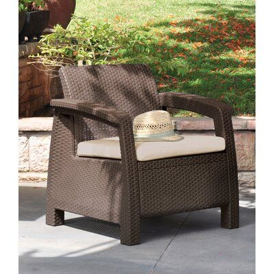 Mercury Row Berard All Weather Outdoor Patio Chair With Cushion Color Brown Plastic Patio Furniture Outdoor Furniture Chairs Outdoor Furniture Sets