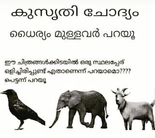 kusruthi chodyam #KusrithiChodyam | Malayalam IQ Puzzles | Riddles