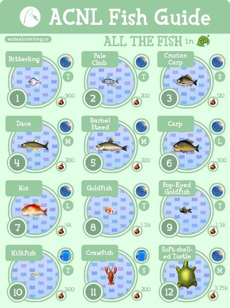 Massive Acnl Fish Guide Detailed Animal Crossing Animal