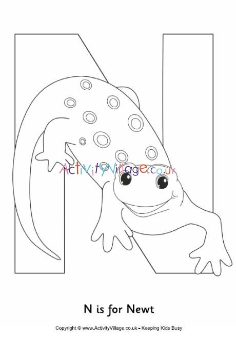 N Is For Newt Colouring Page Cute Coloring Pages Happy Birthday Coloring Pages Birthday Coloring Pages