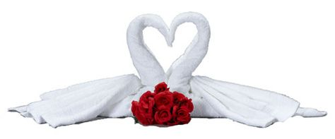 Just in time for Valentine's Day. Learn how to make these towel origami swans that form a hear, online at http://FoldingMagic.com
