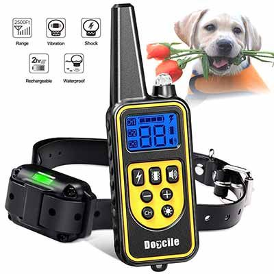 Top 10 Best Dog Training Collars In 2020 Reviews Dog Shock