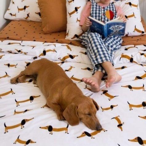 Dachshund Bedding from Castle #Retriever #Labrador #dog